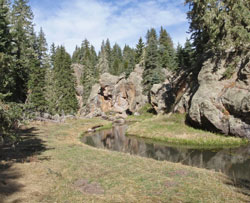E Fork Jemez River NM