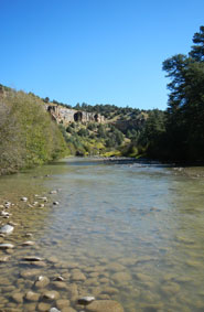 New Mexico Fishing River