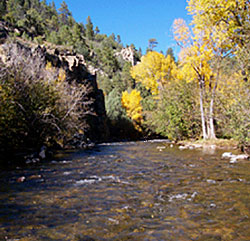 New mexico 39 s best fly fishing rivers and streams for Pecos new mexico fishing