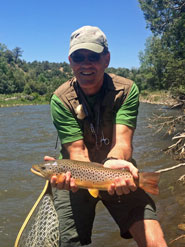 Brown Trout Chama River NM