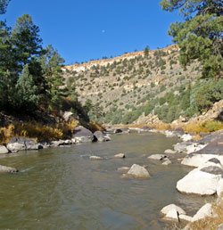 Chama river rio grande for Rio fly fishing