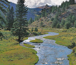 New Mexico's Best Fly Fishing Rivers and Streams