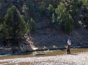 New mexico fly fishing destinations and packages for Fishing new mexico