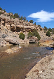 Fly fishing tips skills for new mexico 39 s waters for Pecos new mexico fishing
