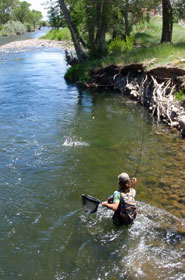 River Fly Fishing Santa Fe