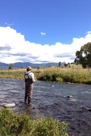 Chama River Fly Fishing