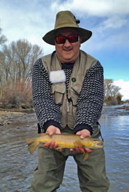 New Mexico Brown Trout