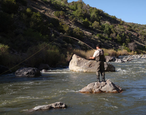 New mexico fly fishing photos images for Rio fly fishing