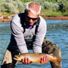 Fall Brown Trout - Fly Fishing in New Mexico